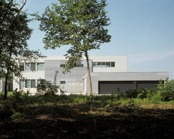 Carus Residence: Back View