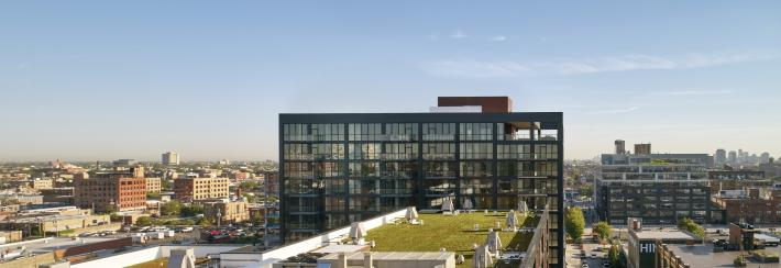 Lake and Ada: Green Roof